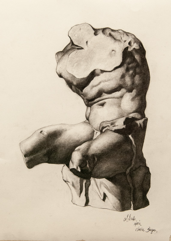 """""""Belvedere Torso"""" 17 x 13 in. graphite-paper"""