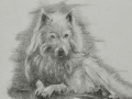 "Linda Leslie, Drawings, 2016-09, ""Guardian,"" 9 x 12in. graphite-paper"
